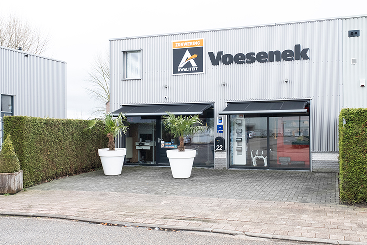 Ad Voesenek-5 734 x 489
